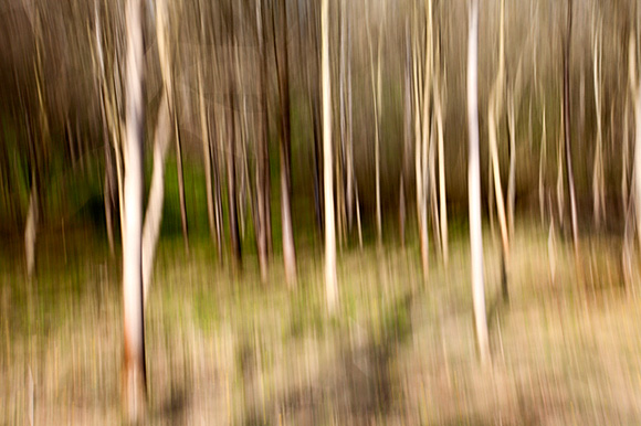 Example intentional camera movement shot