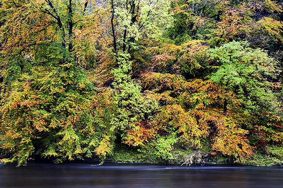Autumn Colours in Wharfedale by Mark Sunderland