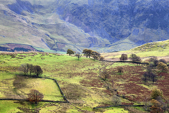 Low Rigg in Autumn from Castrigg Stone by Mark Sunderland