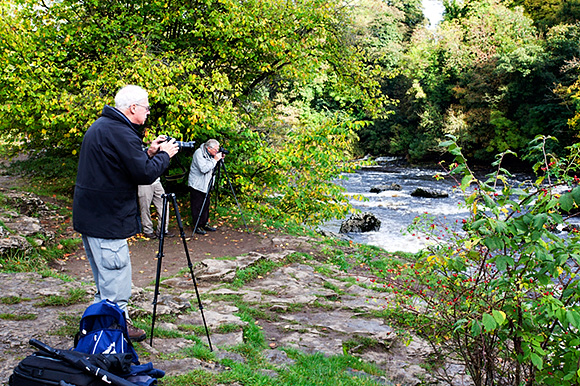 At Upper Aysgarth Falls, with a Touch of Autumn Colour