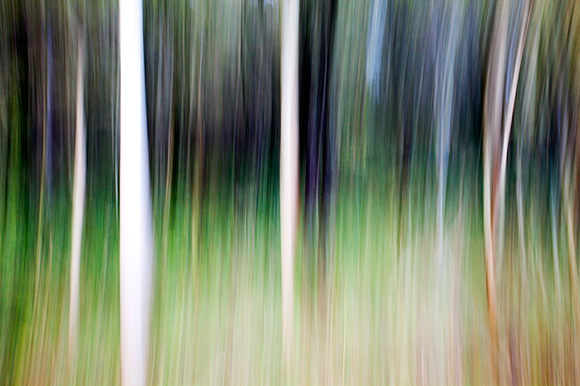 The great effects of playing with camera movement