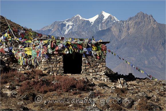 Shelter and Prayer Flags on the Thorung La Pass, Muktinath, Annapurna Circuit, Nepal