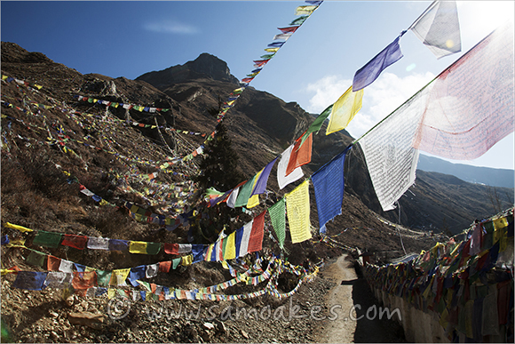 Prayer Flags on hill side at Muktinath Temple, Annapurna, Himalayas, Nepal