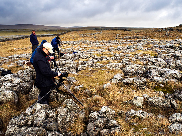 Photographing on the Limestone Pavement at the Lone Tree