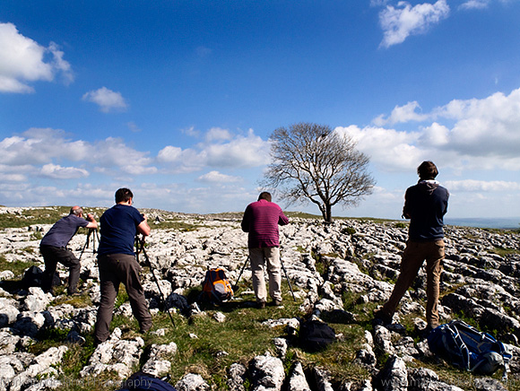 Photographing at the Lone Tree near Malham