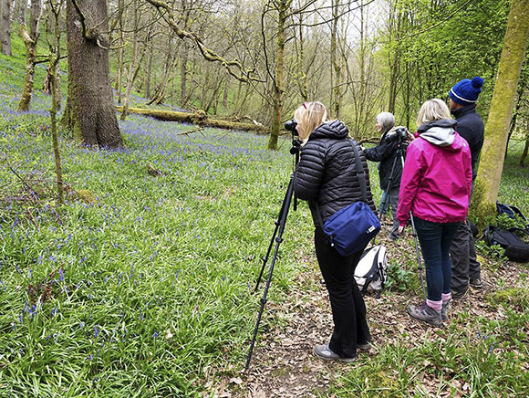 Photographing Bluebells in Strid Wood