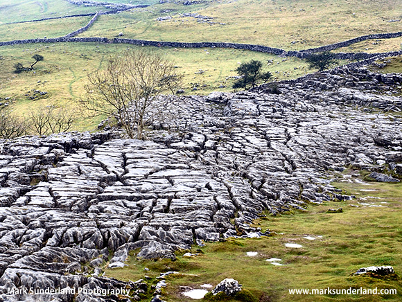 Limestone Pavement at Malham Cove Malham Yorkshire England