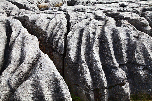 © sam oakes photography - Limestone pavement detail