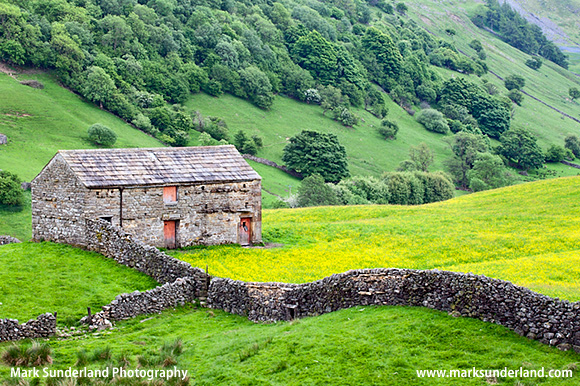Barn with Red Doors near Angram in Swaledale
