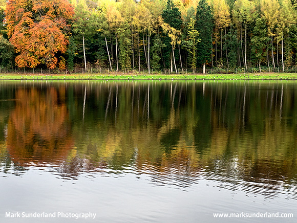 Autumn Trees Reflected in The Lake