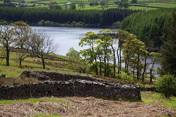 Thruscross Reservoir, Washburn Valley, North Yorkshire Dales