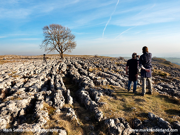 Sidelight on the Limestone Pavement at the Lone Tree