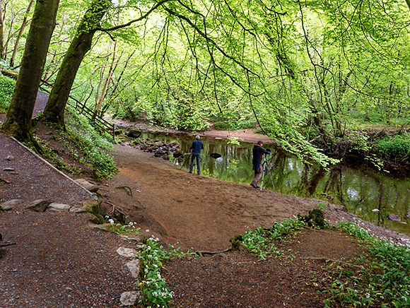 Photographing Reflections in the River Wharfe in Strid Wood