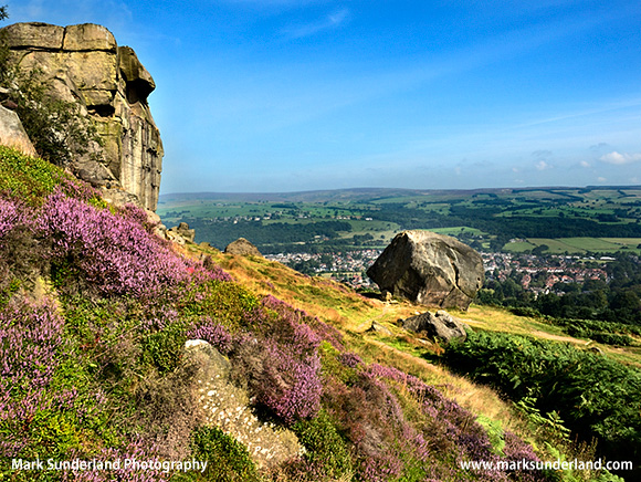 Cow and Calf Rocks on Ilkley Moor near Ilkley West Yorkshire England