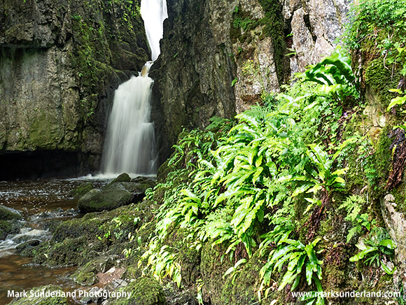 Catrigg Force near Stainforth