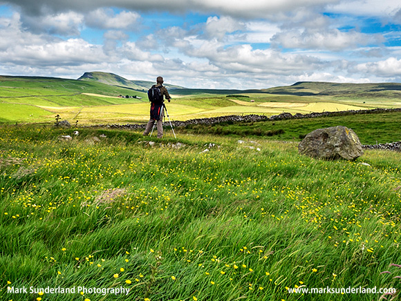Sam Enjoying the View to Pen Y Ghent