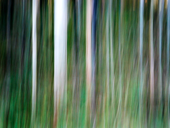 Example Intentional Camera Movement Image