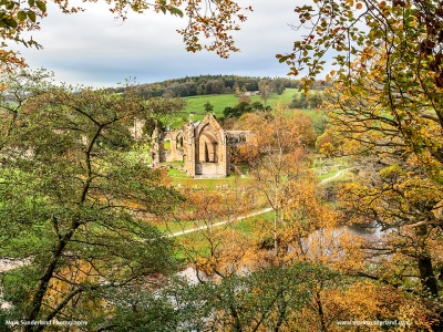 Bolton Priory Ruins in Autumn