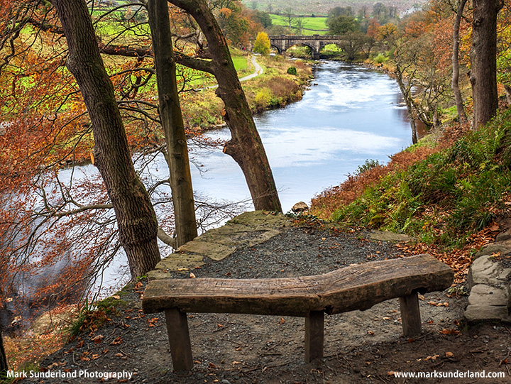 Viewpoint over the River Wharfe in Strid Wood