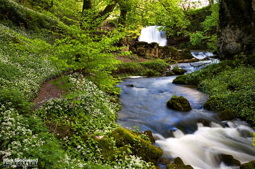 Janets Foss and Gordale Beck in Spring