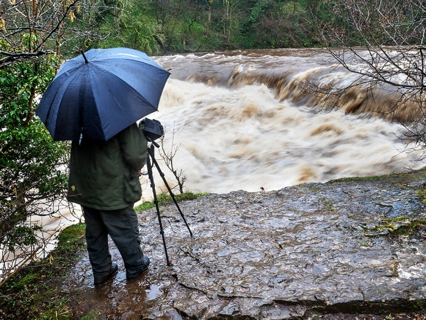 The wild River Ure at Upper Aysgarth Falls
