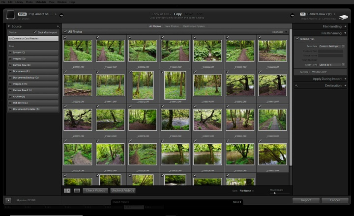 Lightroom import window showing File Renaming on the right