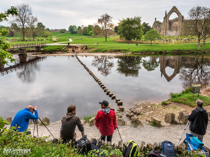 Working with reflections at the stepping stones